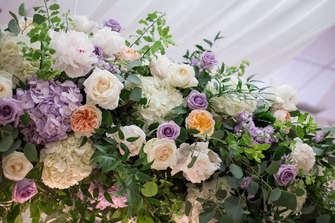 Designs in Bloom