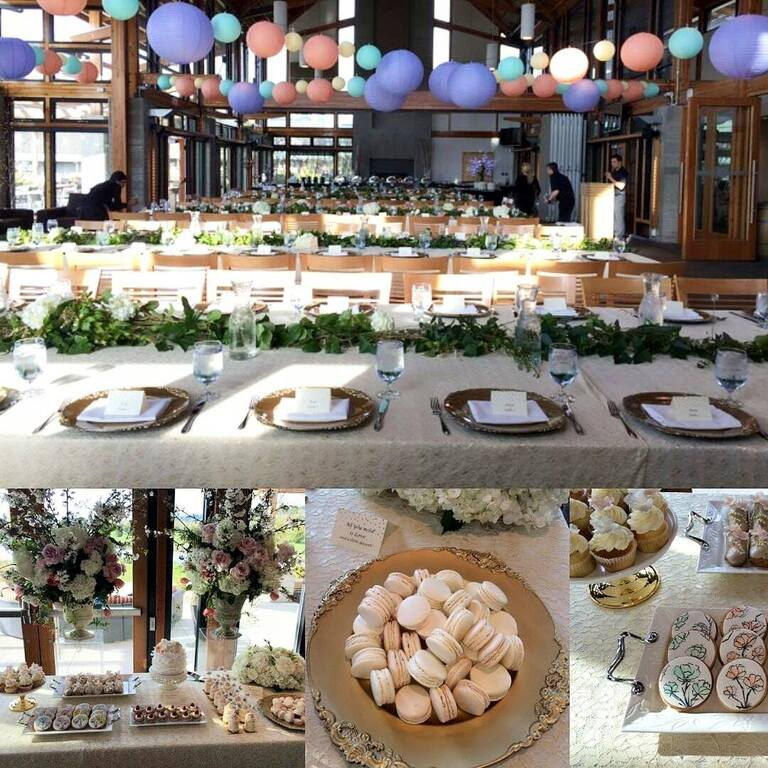 Coral Design and Events